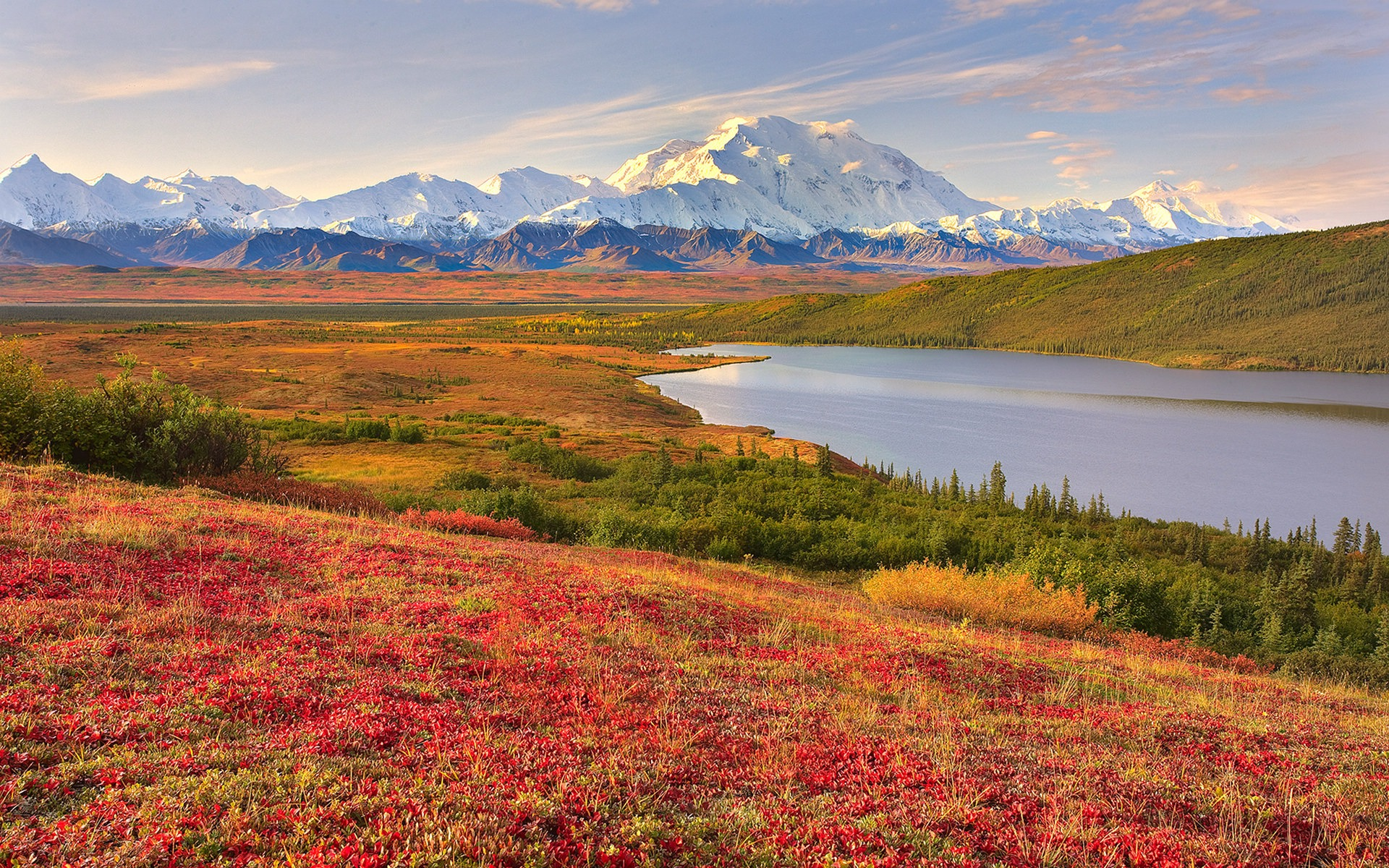 Denali National Park Beautiful Landscape HD Wallpaper 1920x1200