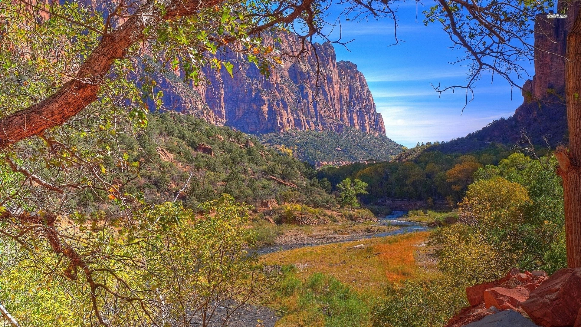 Zion National Park wallpaper   Nature wallpapers   38016 1920x1080