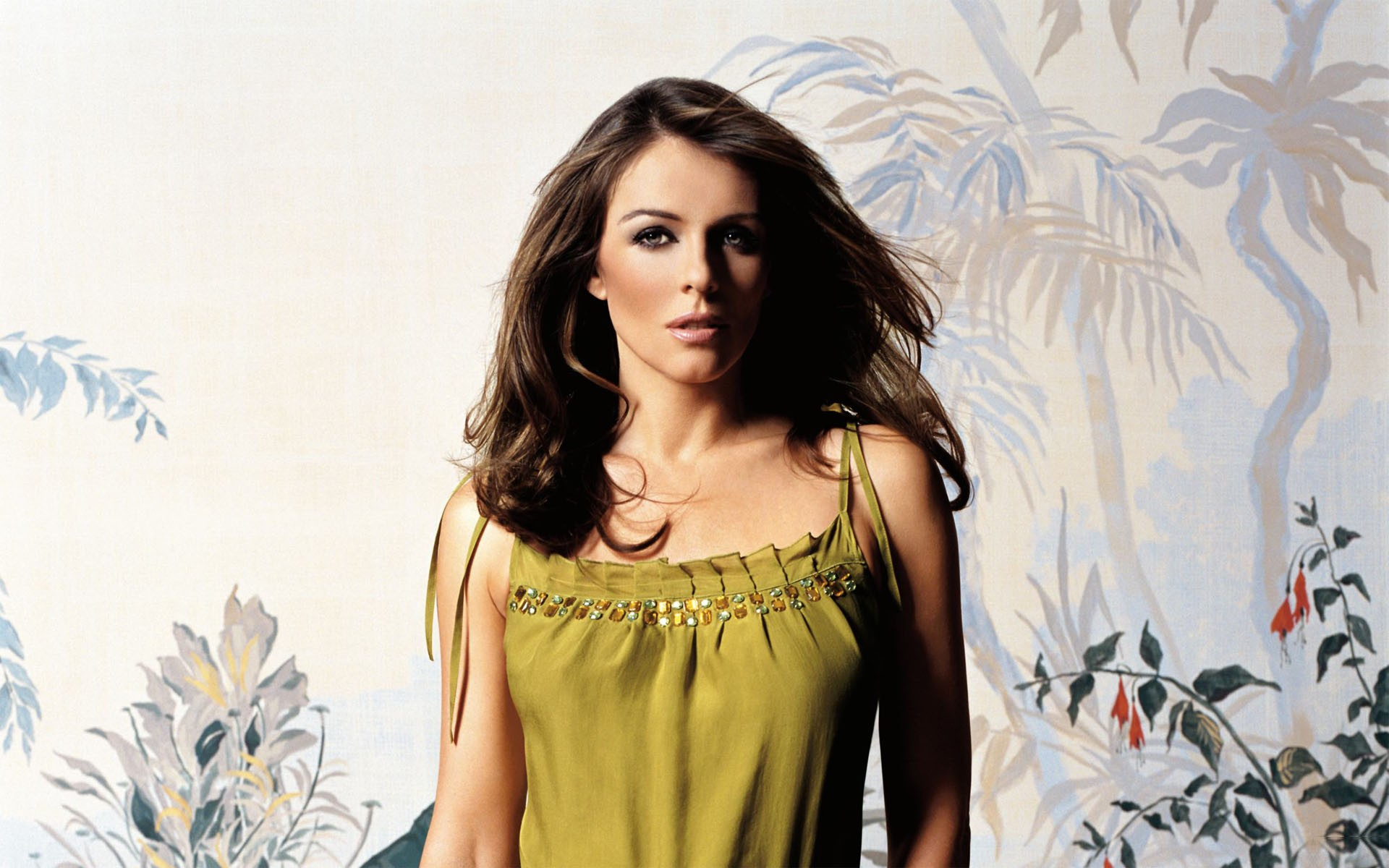 Elizabeth Hurley Wallpapers 1920x1200
