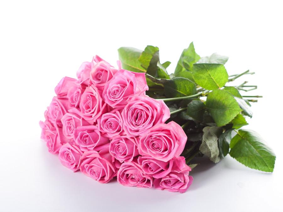 Pink Roses Desktop Background   Wallpaper High Definition High 900x675