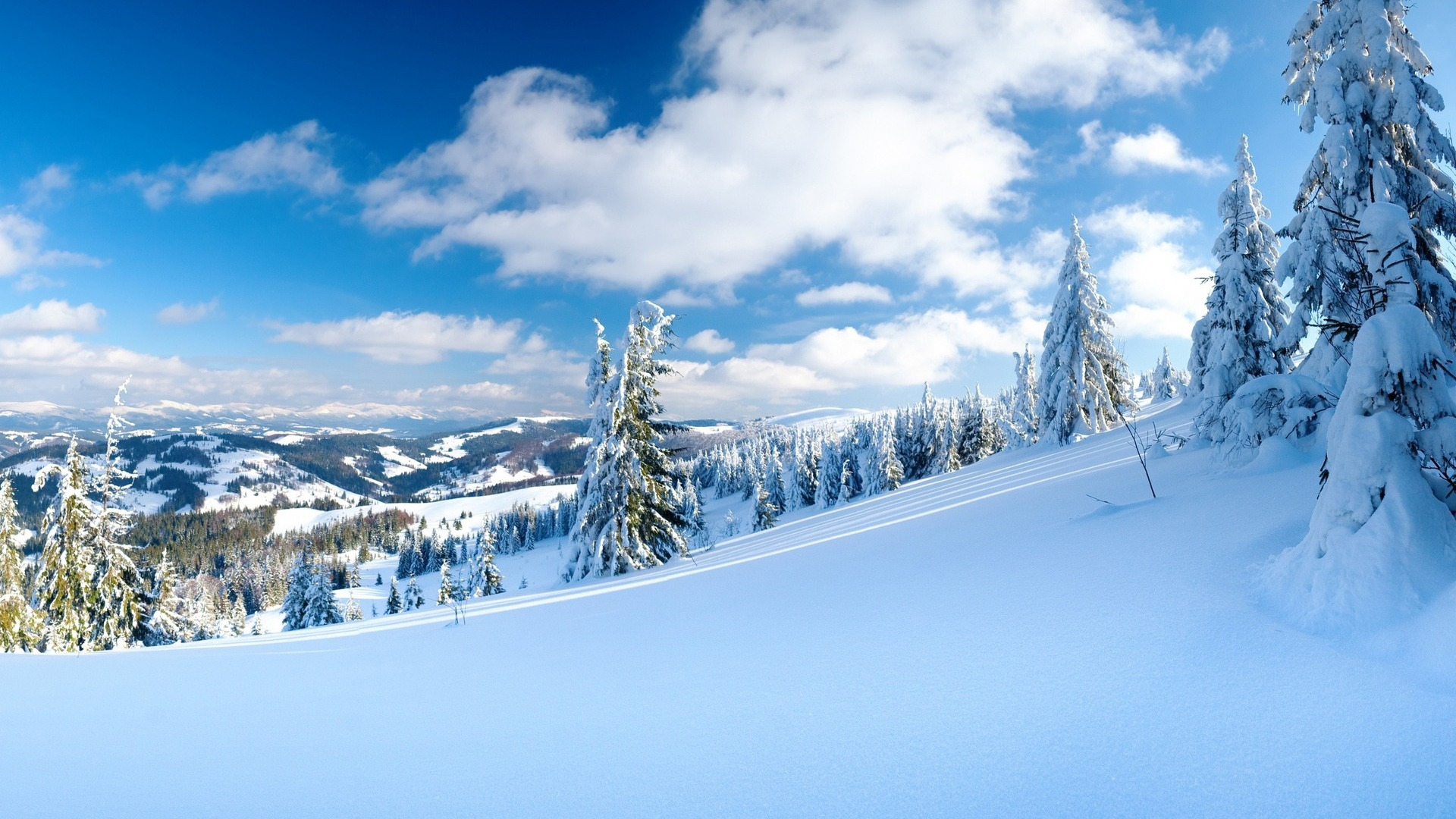Photo Collection Snow Wallpaper Widescreen 1920X1080