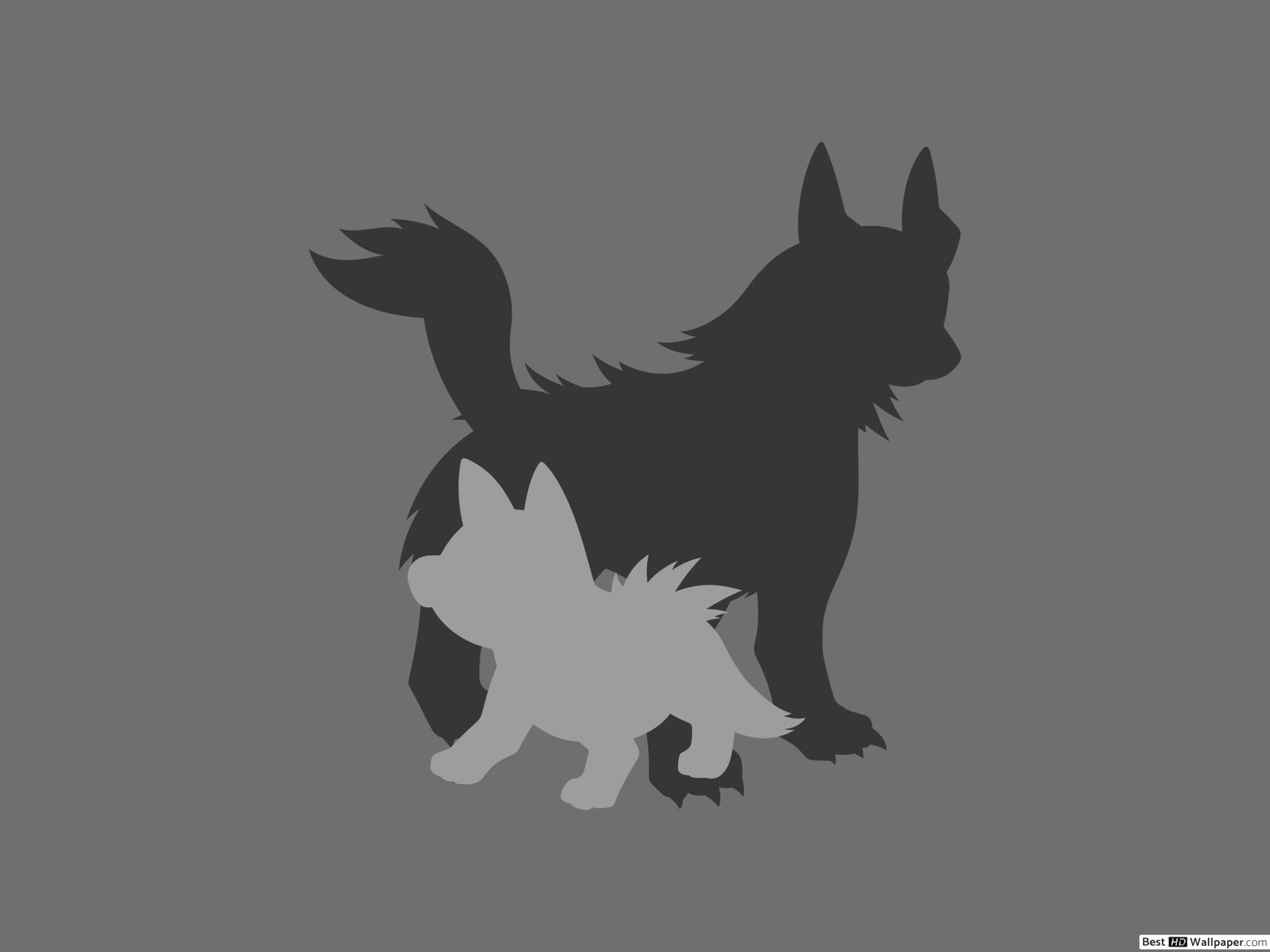 Mightyena and Poochyena of Pokemon HD wallpaper download 2048x1536