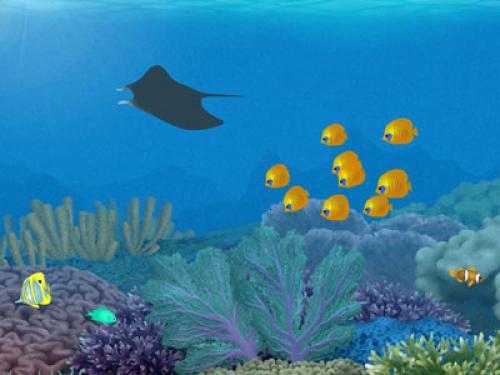 free 3d aquarium wallpapers enjoy 3d aquarium wallpapers for your 500x375