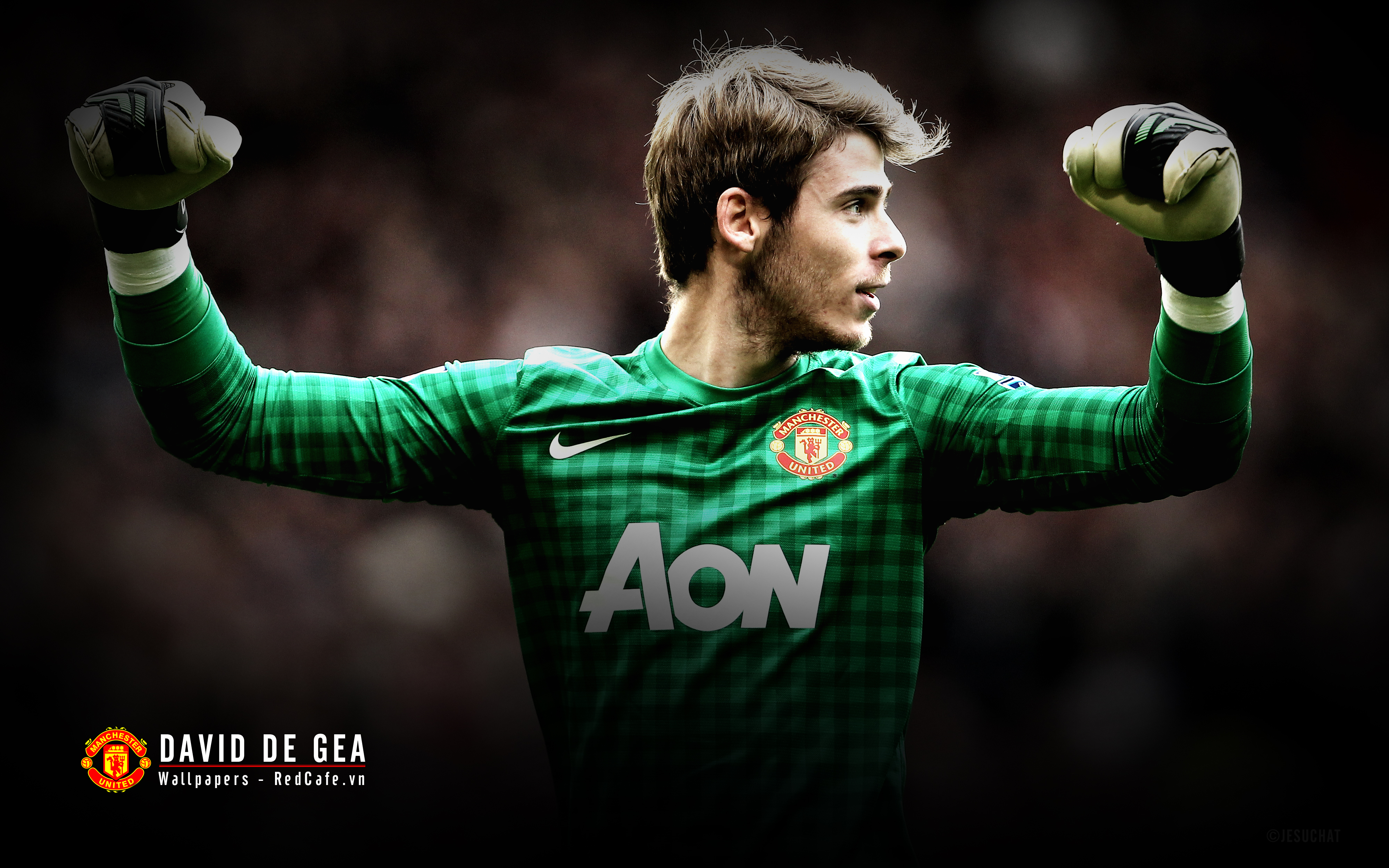 The goalkeeper of Manchester United David De Gea wallpapers and 4000x2500
