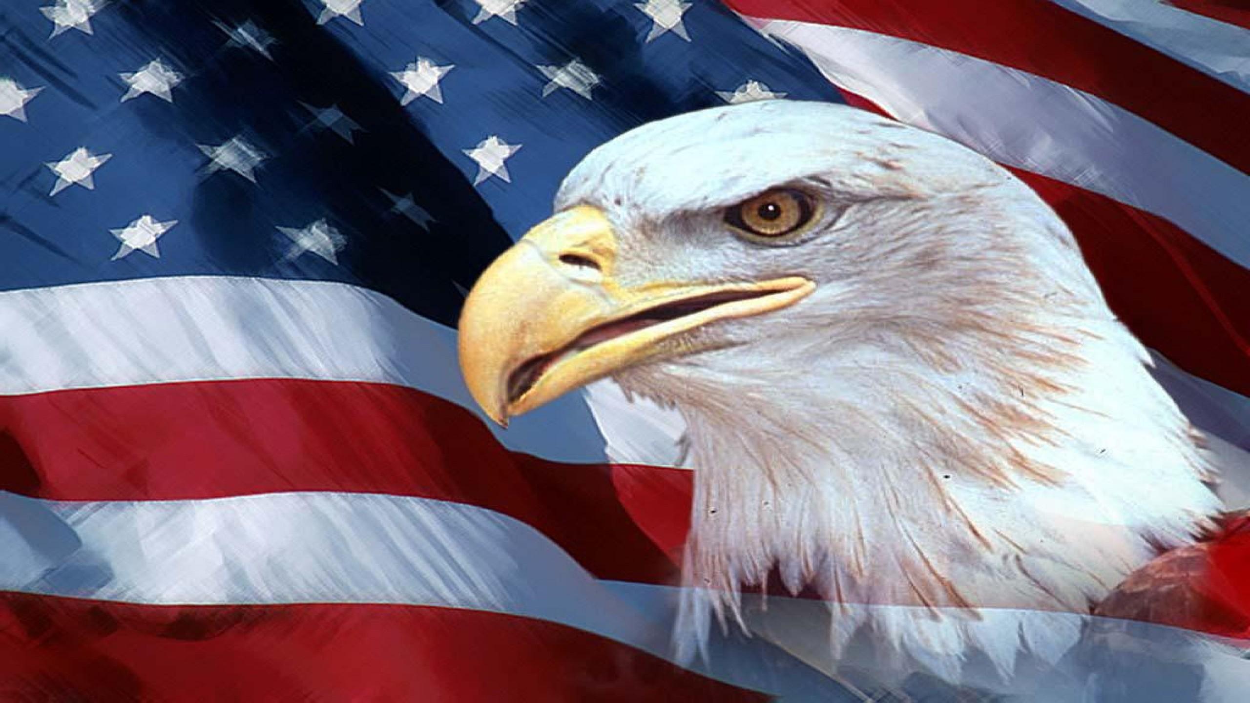 American Flag with Eagle Wallpaper - WallpaperSafari
