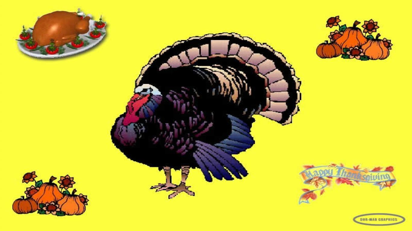 Funny Thanksgiving Wallpaper Backgrounds Humour Thanksgiving 1366x768