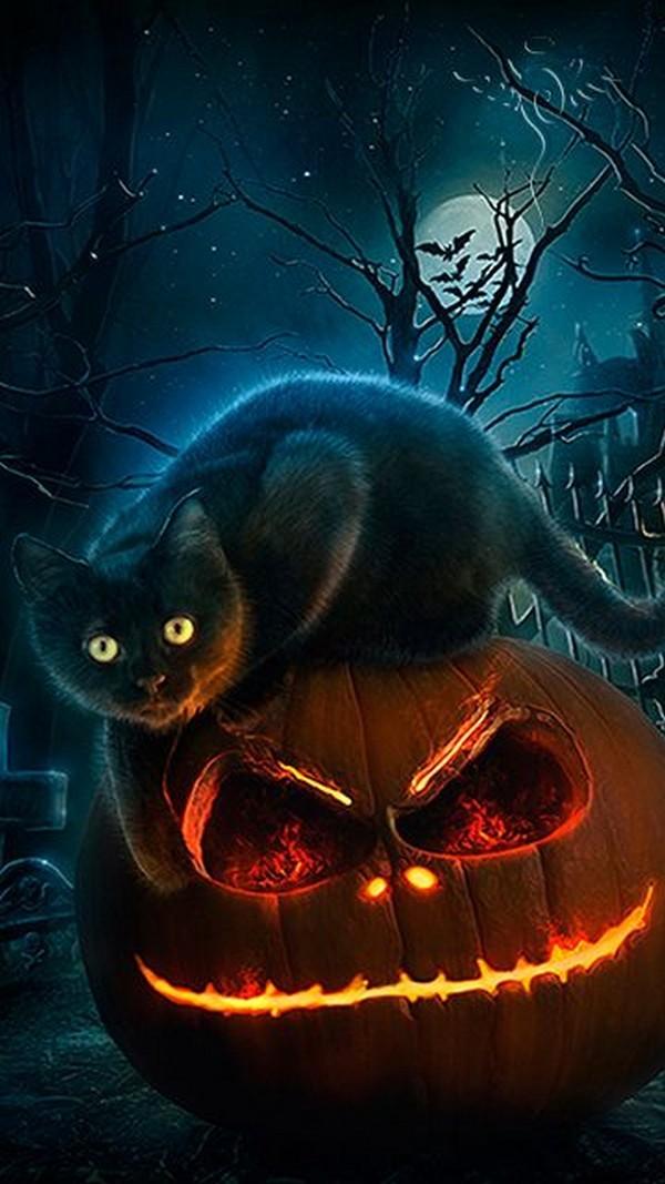 Halloween Wallpaper Phone 9778   HD Wallpaper Download 600x1067