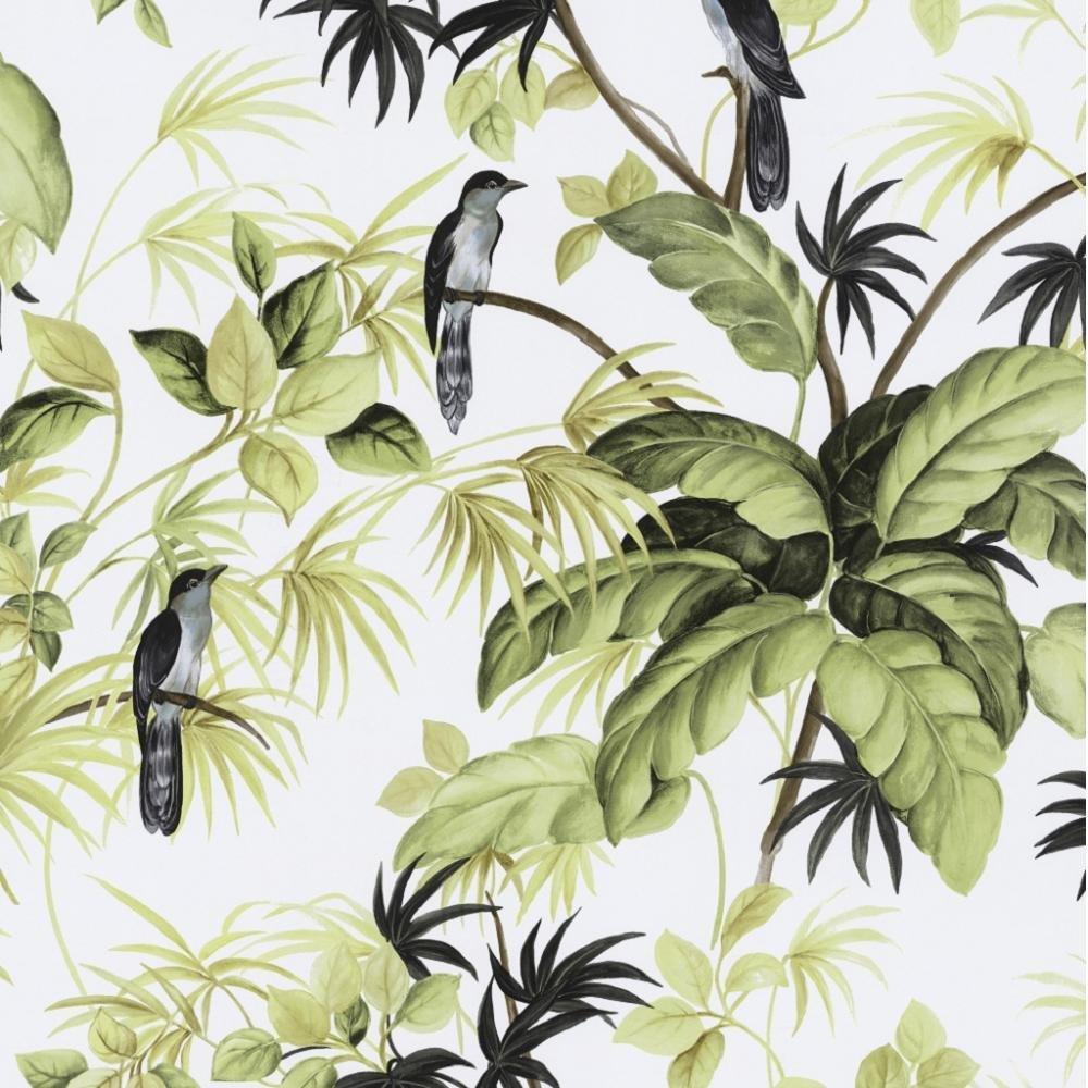 Tropical Leaf Wallpaper Leaves wallpaper 05550 20 1000x1000