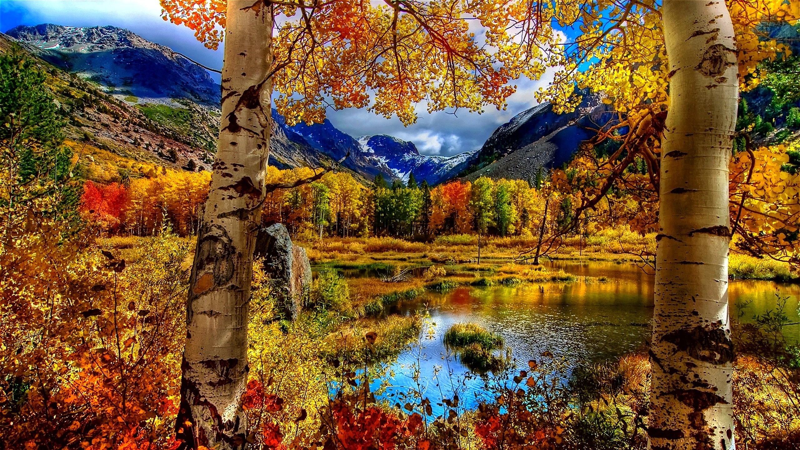 Fall Computer Backgrounds 76 images 2560x1440