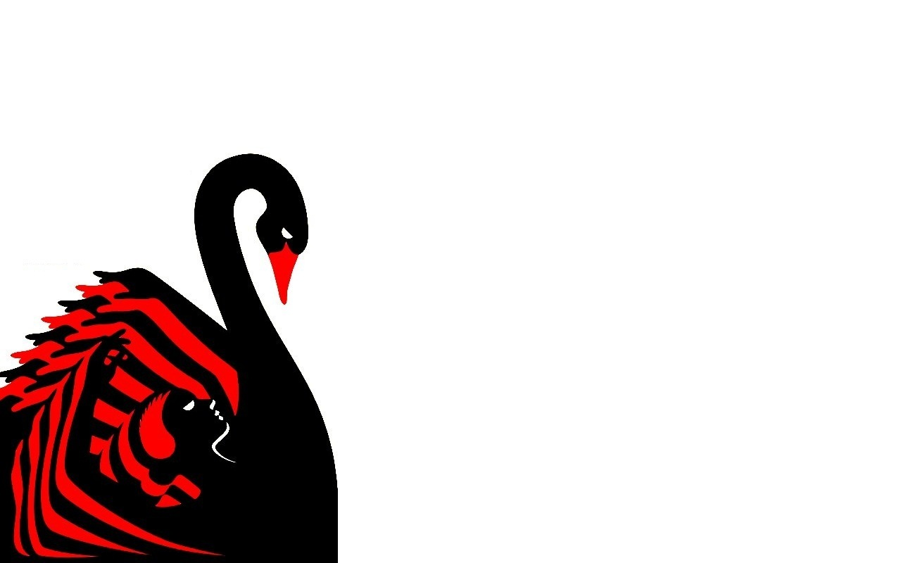 Black Swan Poster Wallpaper   Black Swan Wallpaper 19248405 1280x800