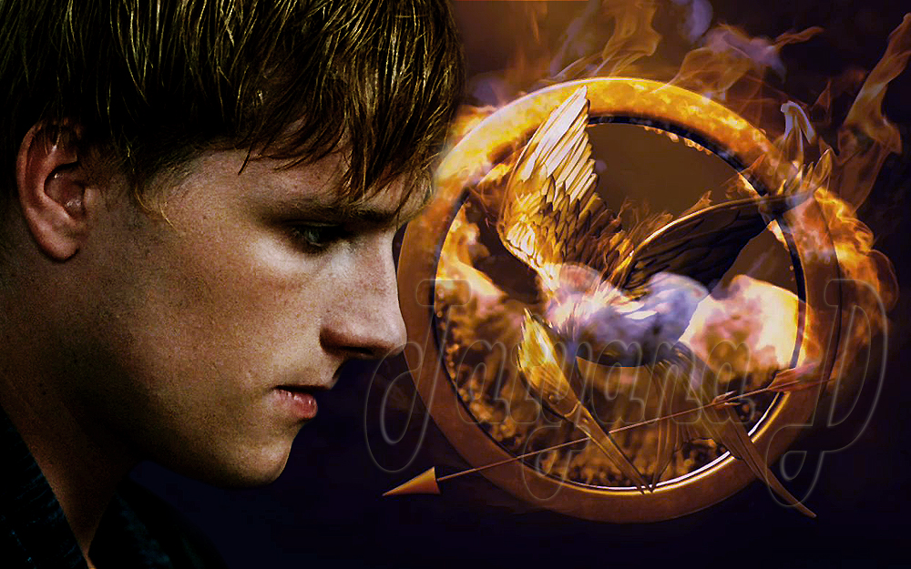 The Hunger Games   The Hunger Games Movie Wallpaper 32160913 1000x625