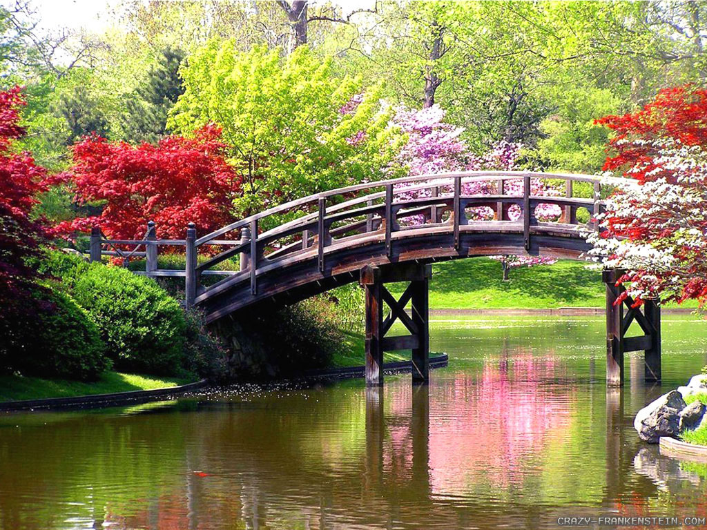 Trees Spring Scene Wallpapers 1024x768 pixel Nature HD Wallpaper 1024x768