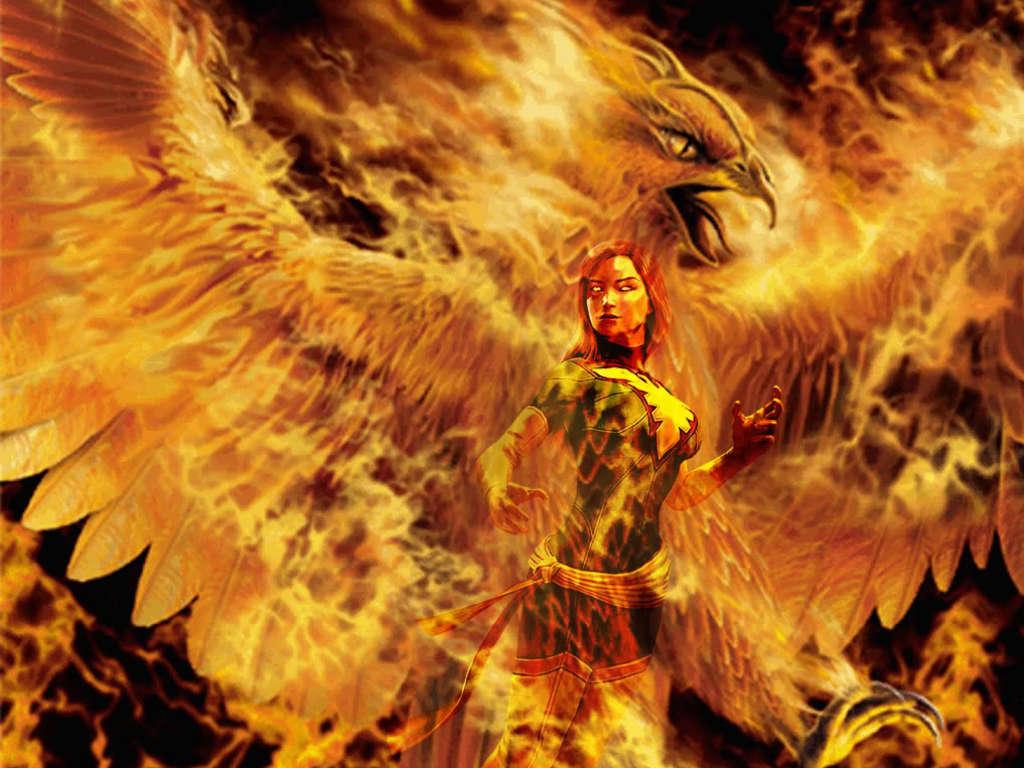 Phoenix wallpaper free wallpapersafari - Fenix bird hd images ...