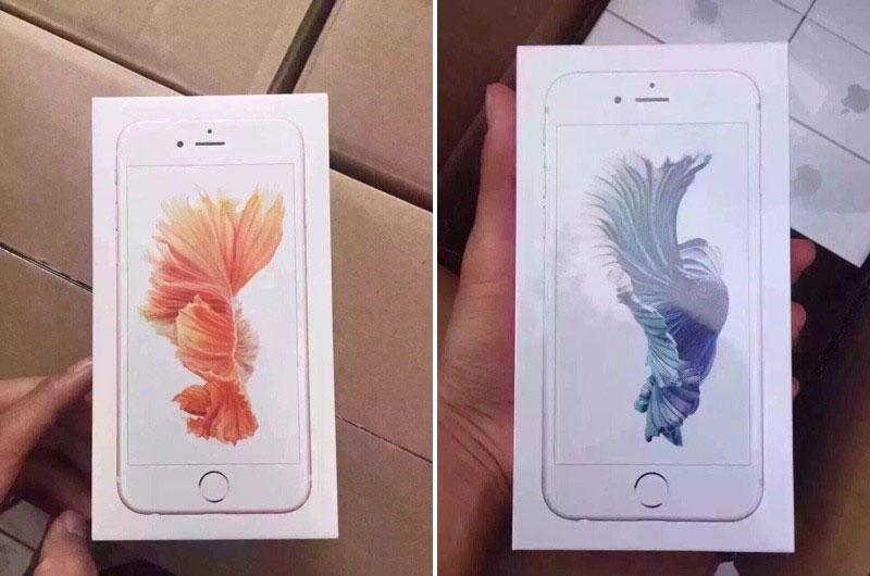 49+] iPhone 6s Rose Gold Wallpaper on WallpaperSafari