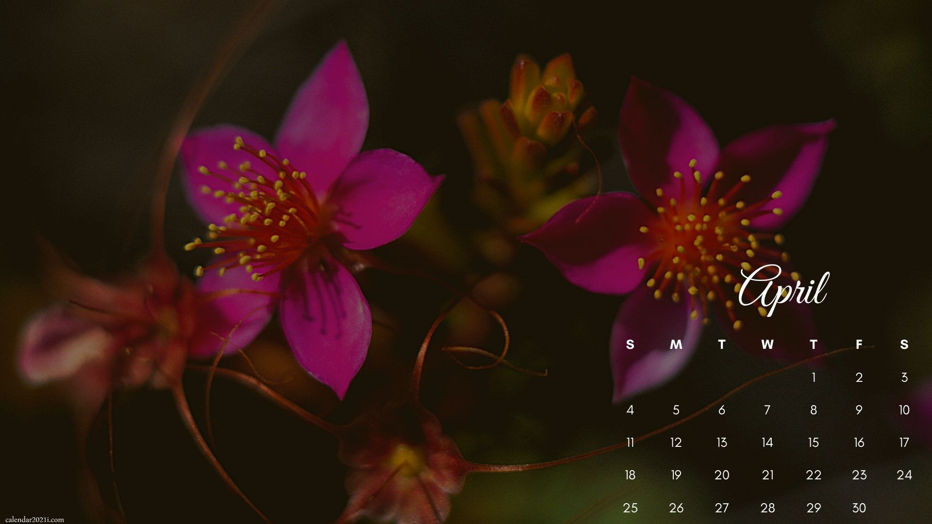 April 2021 Calendar HD Wallpapers Download Calendar 2021 1920x1080