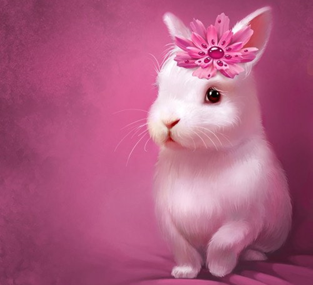 image Cute bunny girl in cam