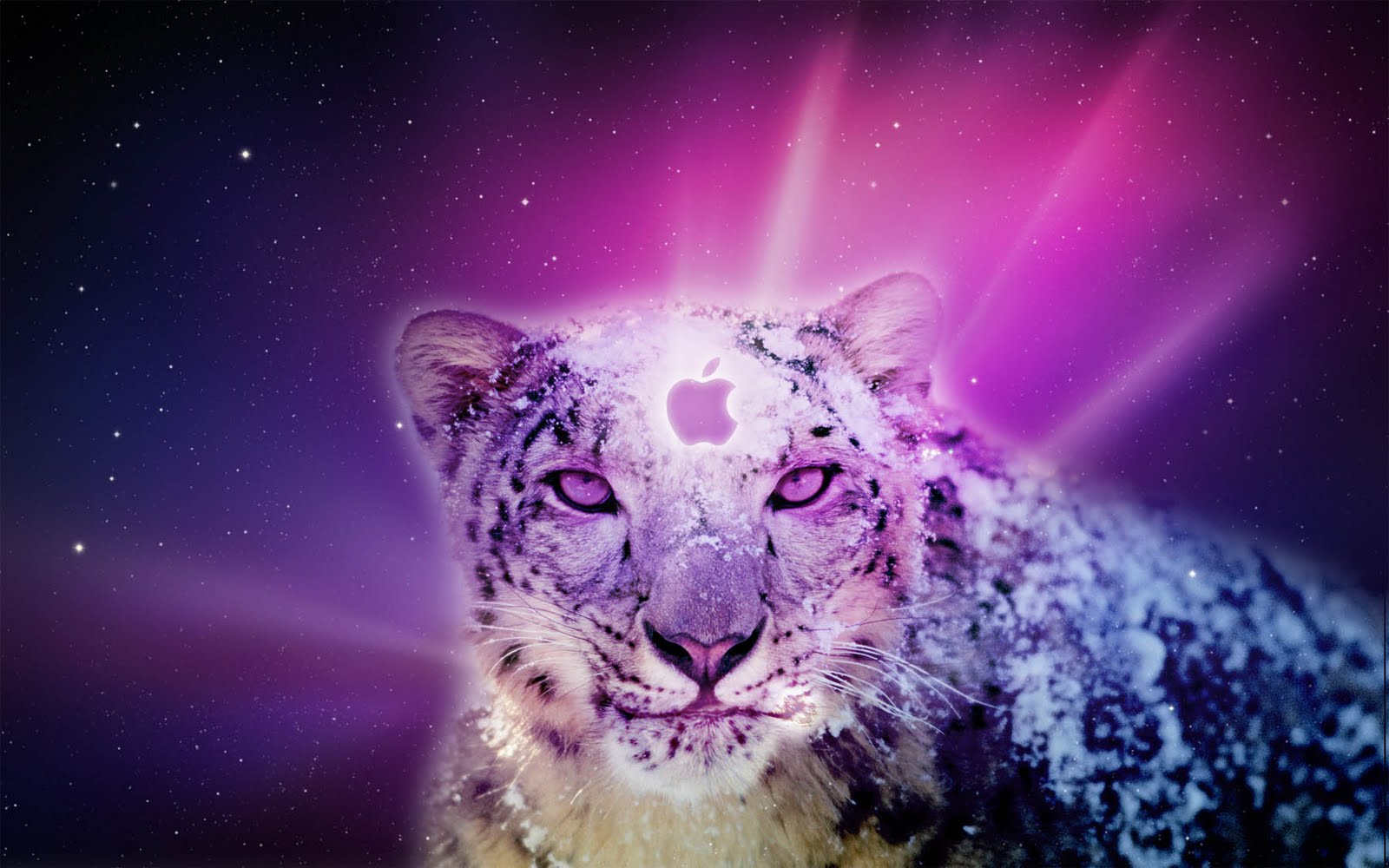 Apple Mac OS X Snow Leopard