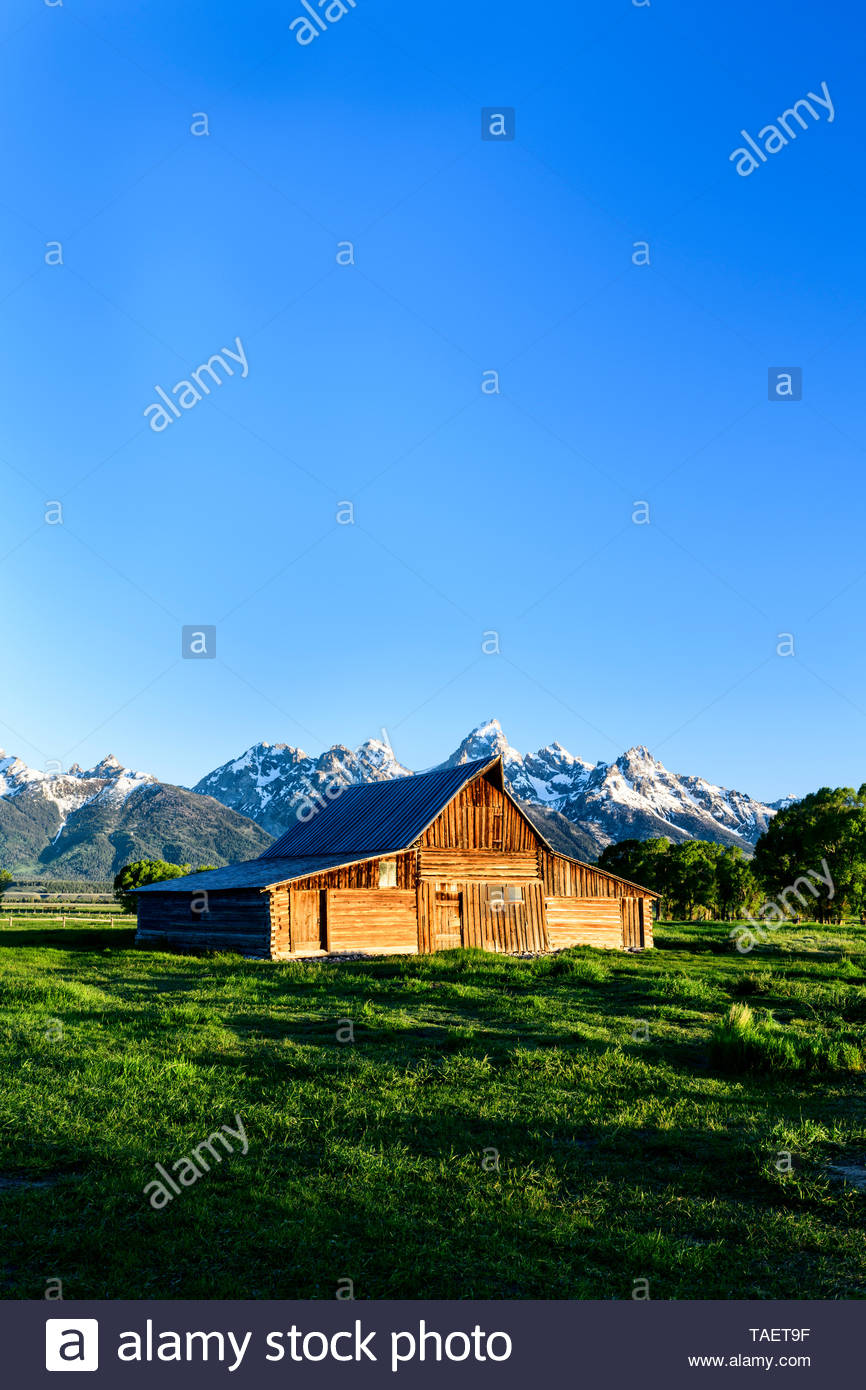 An old barn along Mormon Row with the Grand Tetons in the 866x1390