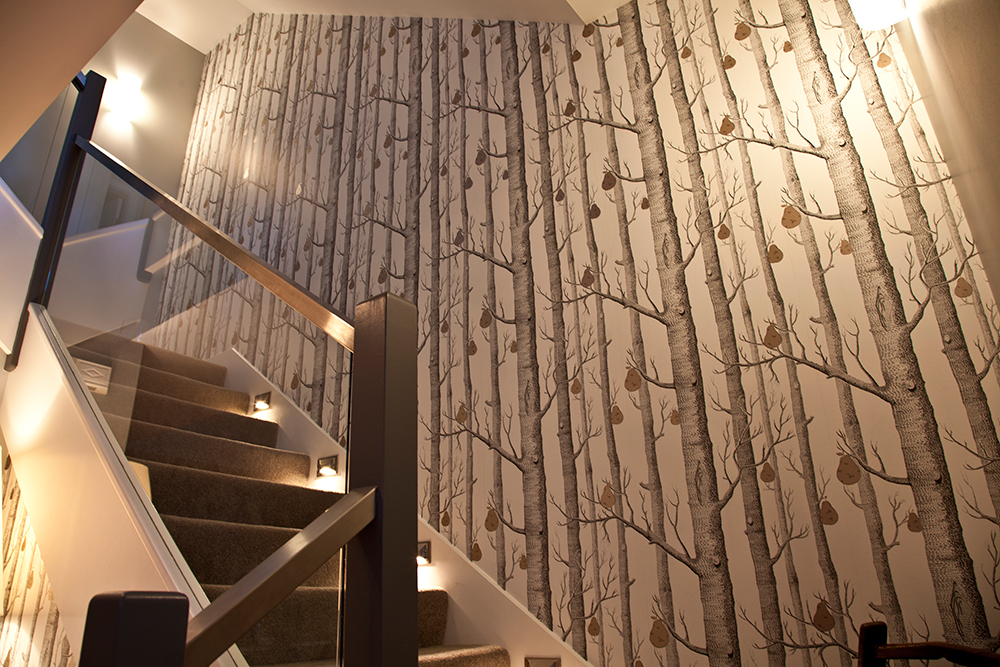 Birch Bark   Wallpaper Installation Vancouver BC 1000x667