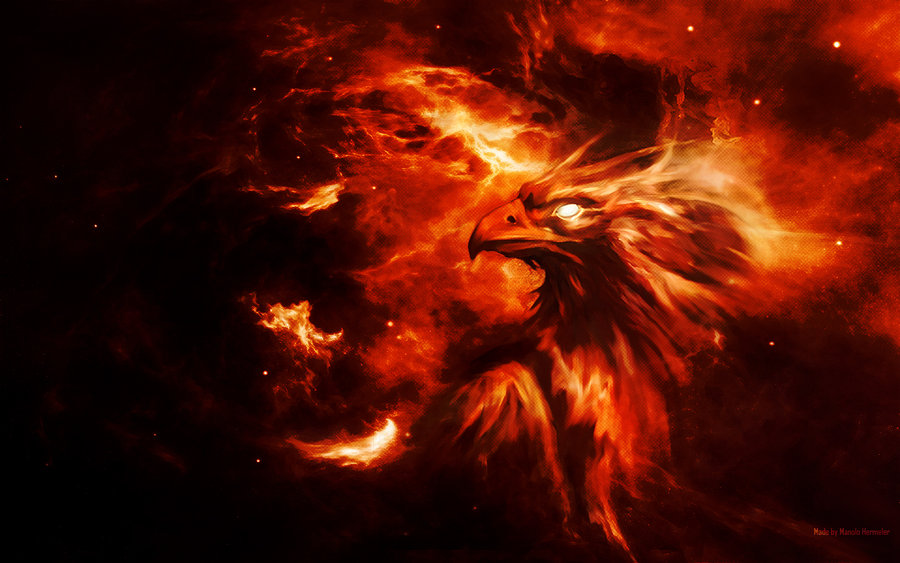 Phoenix background by Symbiot2006 900x563