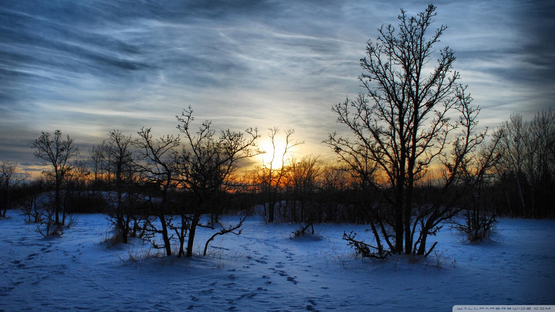 Early Winter Morn glorious winter sunset wallpaper   ForWallpapercom 1920x1080