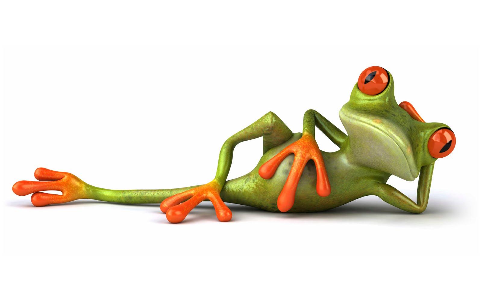 Cartoon Frogs Wallpaper Cartoon Images 1600x1000