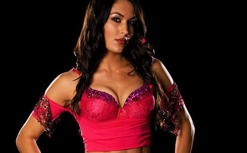 wallpapers brie bella wallpapers brie bella wallpapers brie bella 1024x637