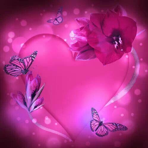 pink rose wallpaper for walls
