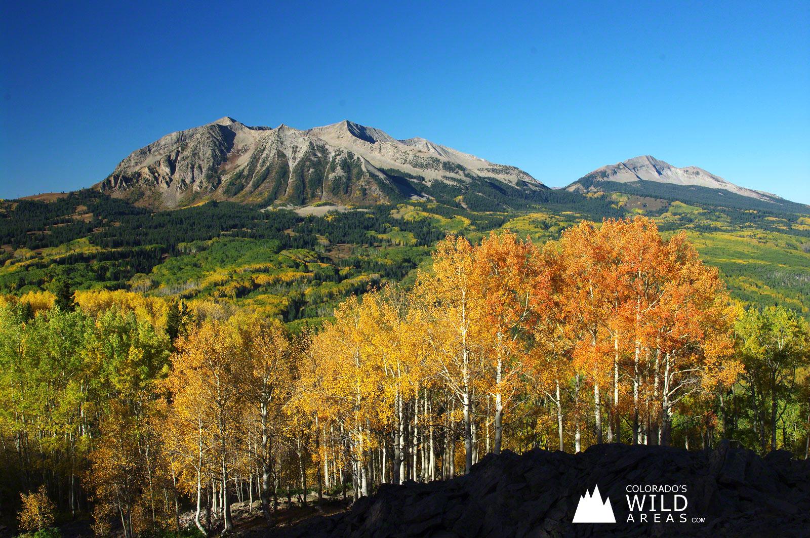 Colorados Fall Colors Wallpaper Colorados Wild Areas 1600x1063