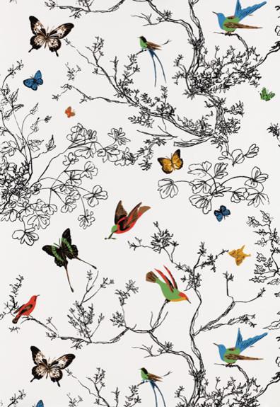 Birds and Butterflies Wallpaper by Schumacher   Eclectic   Wallpaper 396x575