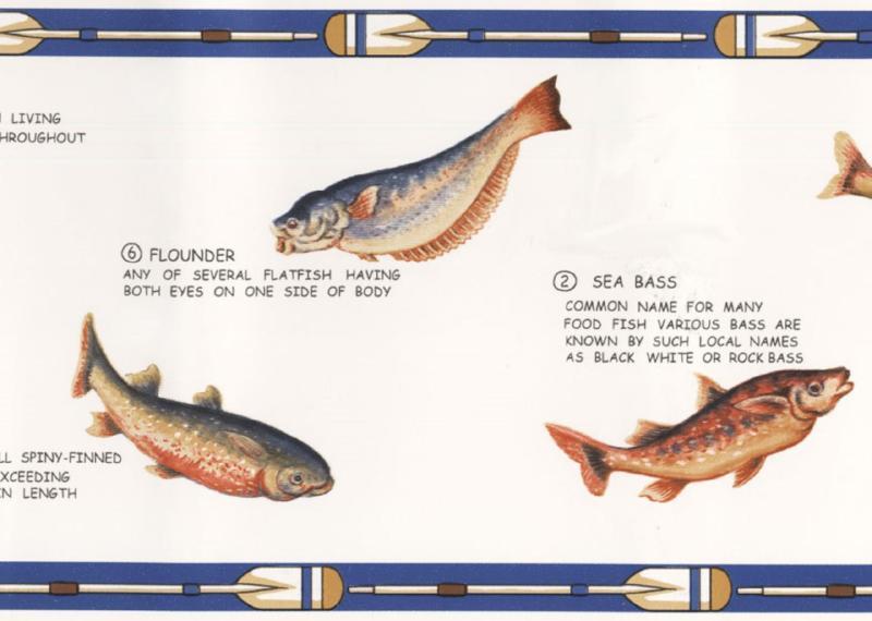 Fish Blue White Cream Lodge Man Cave Fishing Wall Wallpaper Border 800x570