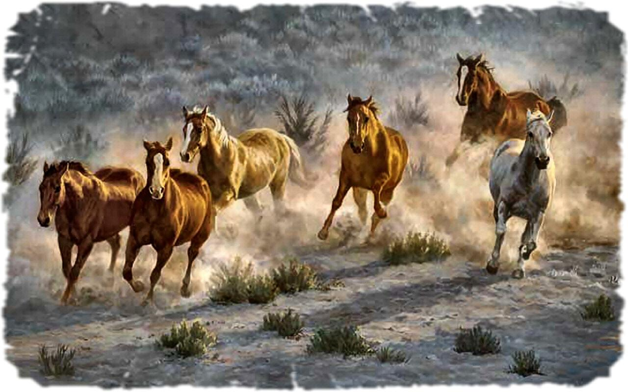 wild horses racing wallpaper -#main