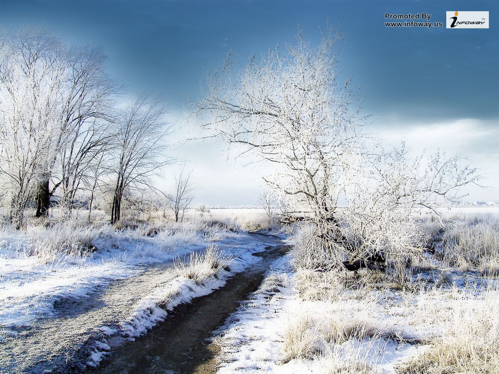 46 Country Winter Wallpaper For Desktop On Wallpapersafari