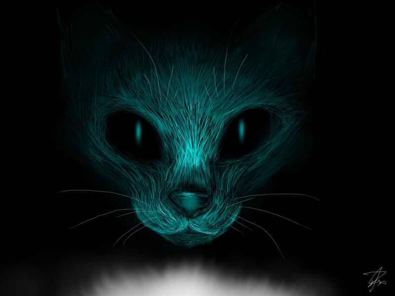 Warrior Cats Wallpaper Starclan Starclan cat by eliza1star 800x600