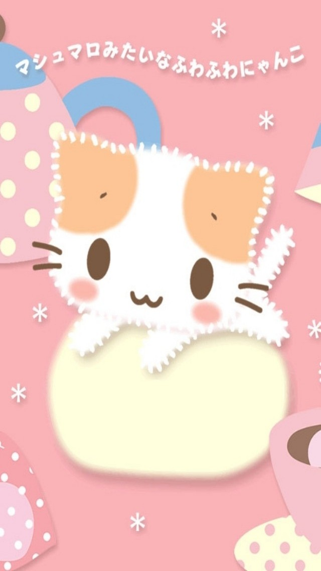 cute kitty of Korea iPhone 5 wallpapers HD 640x1136