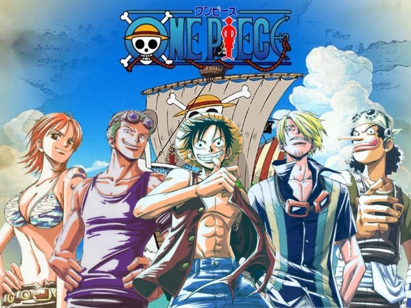 Straw Hat Crew Nakamas wallpaper   Animebay Wallpapers 800x600