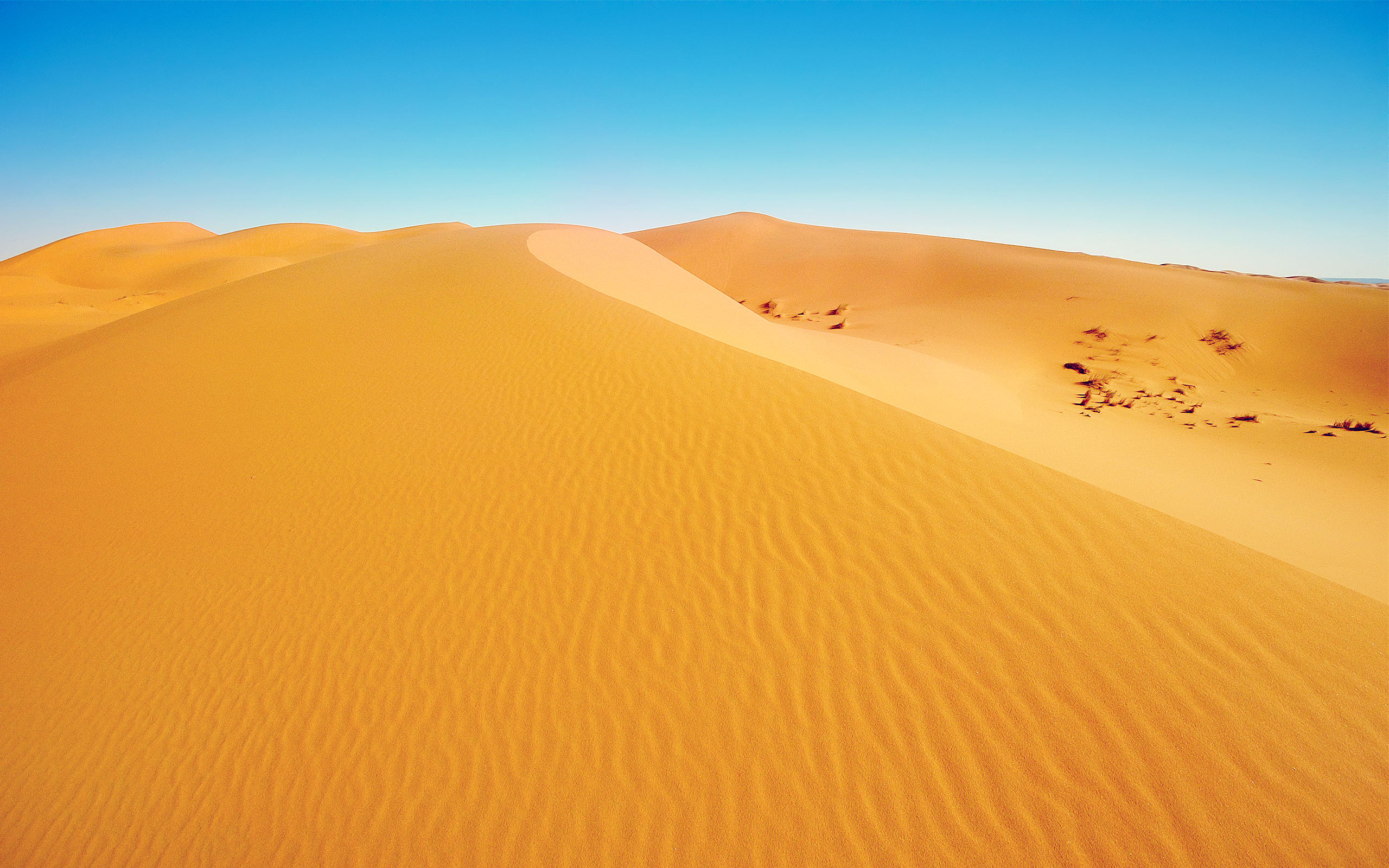 African Desert Wallpapers HD Wallpapers 2560x1600