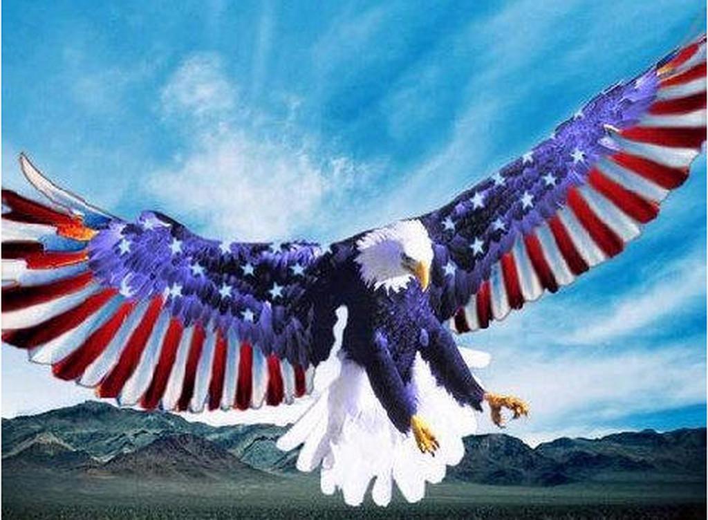 tag eagle american flag eagle flag 1024x752