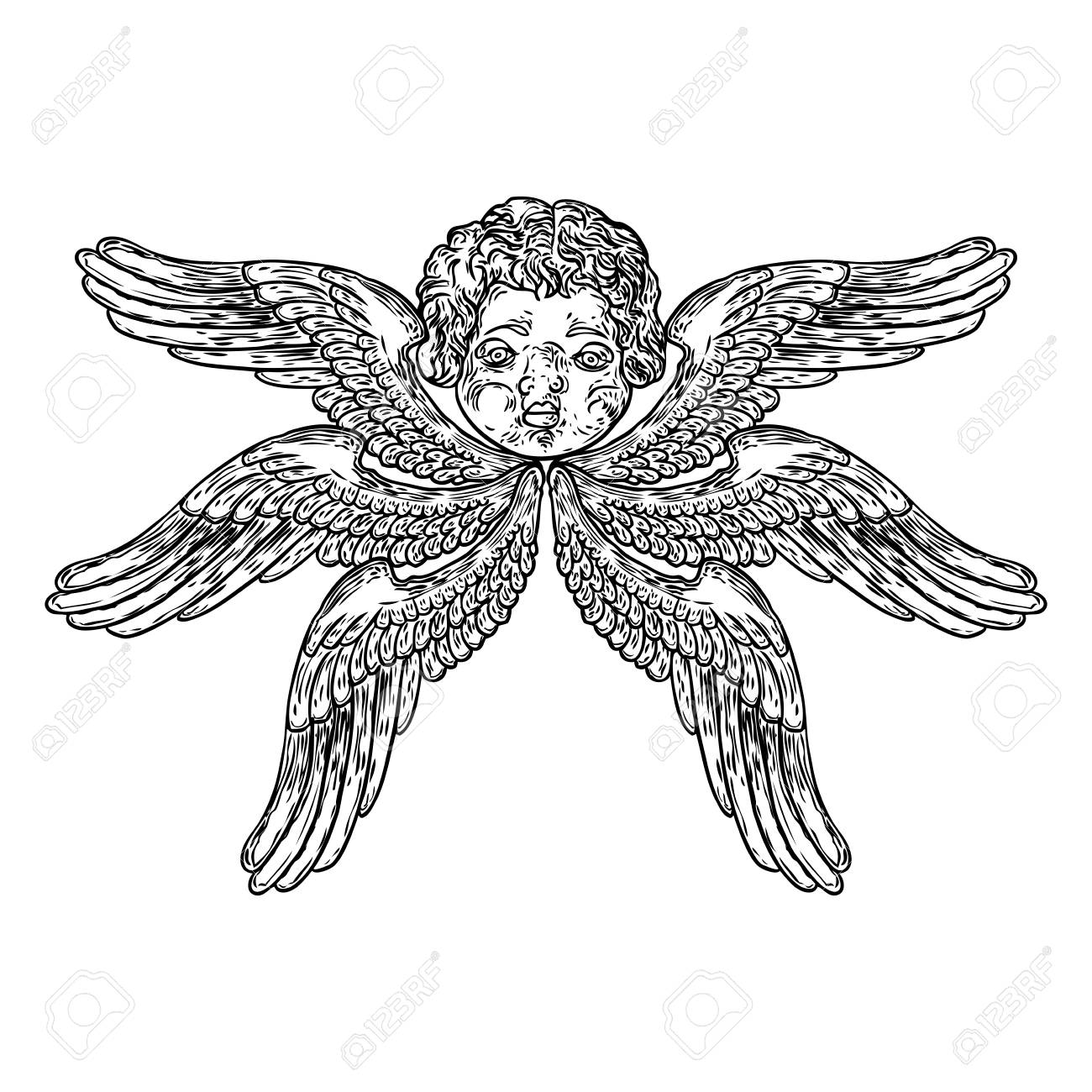 Cherub With Wings Winged Baby Angel Isolated On White Background 1300x1300