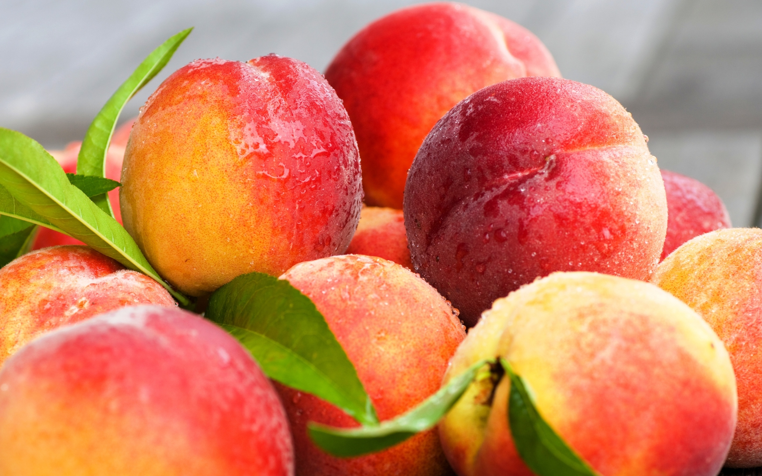 Fresh Peaches Fruit Wallpapers   2560x1600   1118038 2560x1600