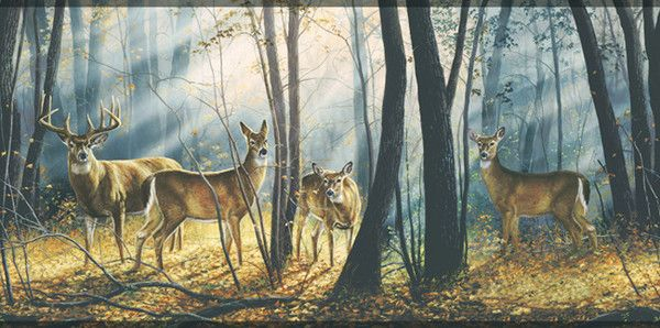wwwpapermywallscombuck and does deer wallpaper border border 600x298