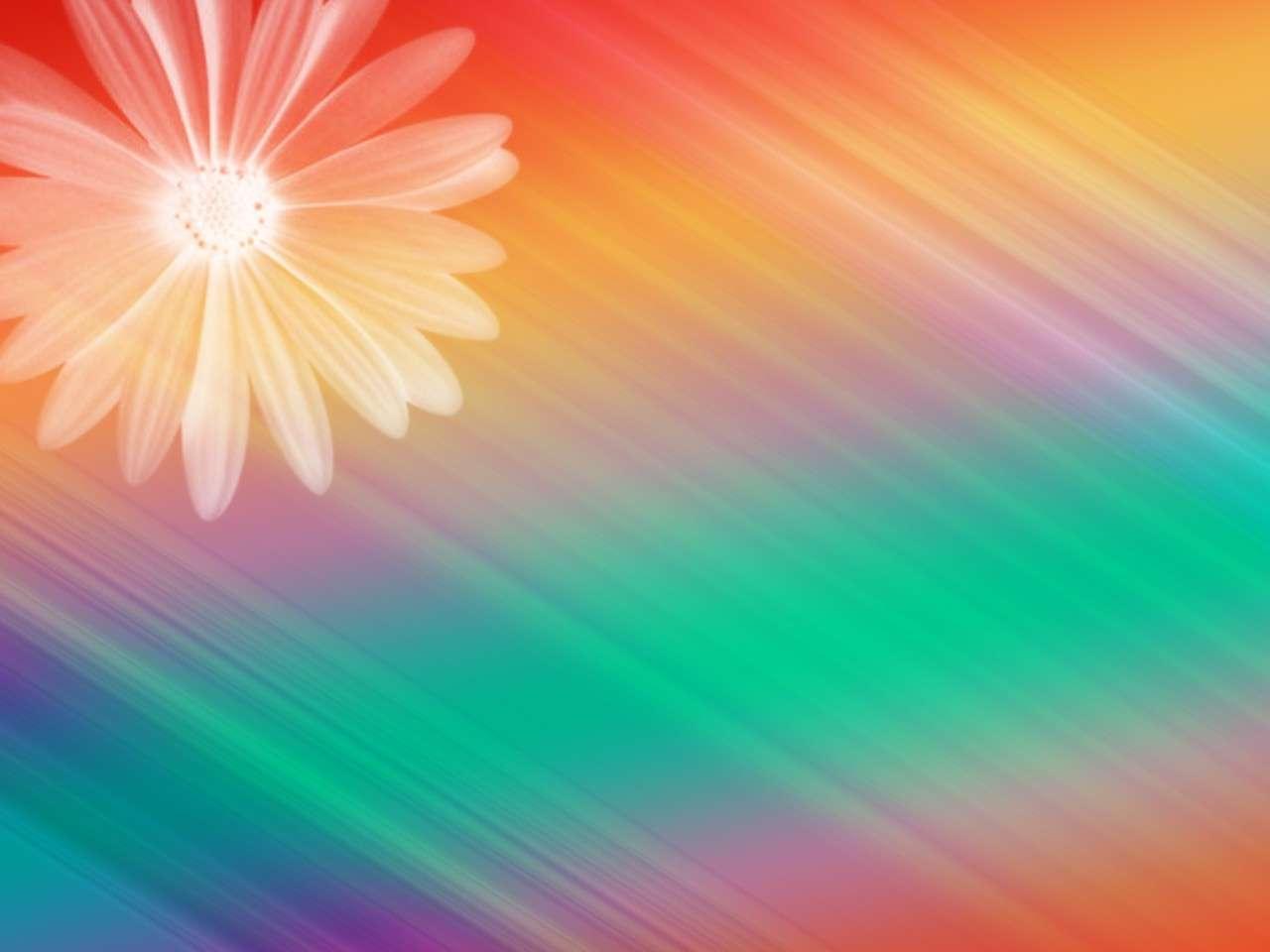 Colorful Pretty Designs Backgrounds Elegant floral design rainbow 1280x960