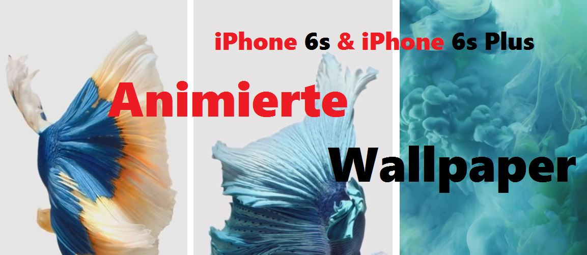 Iphone 6s Might Sport Animated Wallpapers Like Apple Watch: IPhone 6s Animated Wallpapers