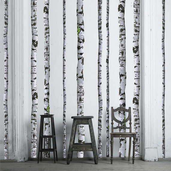 Super Real Birch Trees Wall Decals   9 ft tall Quantity of 5 570x570
