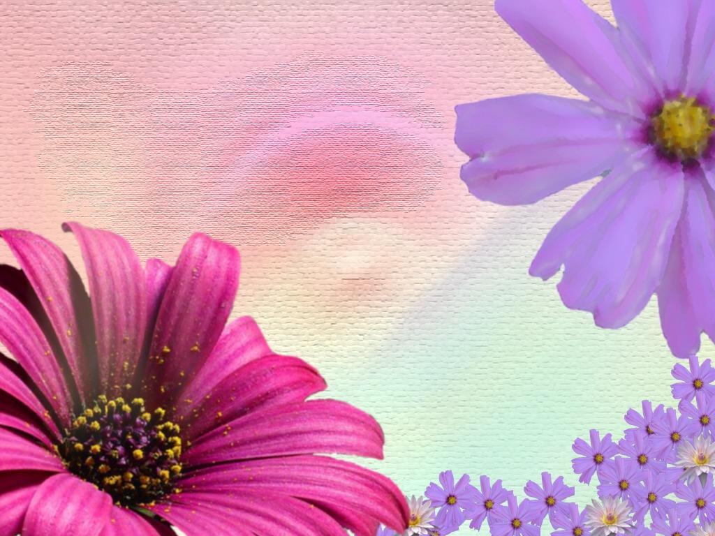 Spring Wallpapers Cute Spring Wallpaper 1024x768