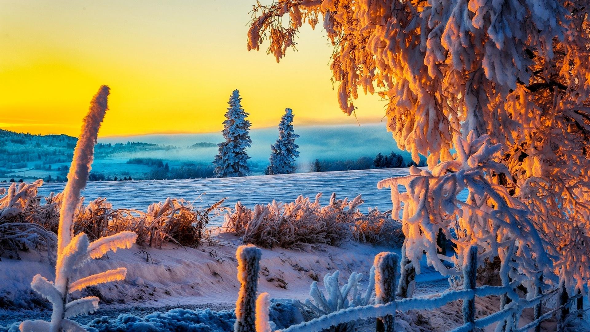 Beautiful Winter Sunrise 4K Ultra HD wallpaper 4k WallpaperNet 1920x1080