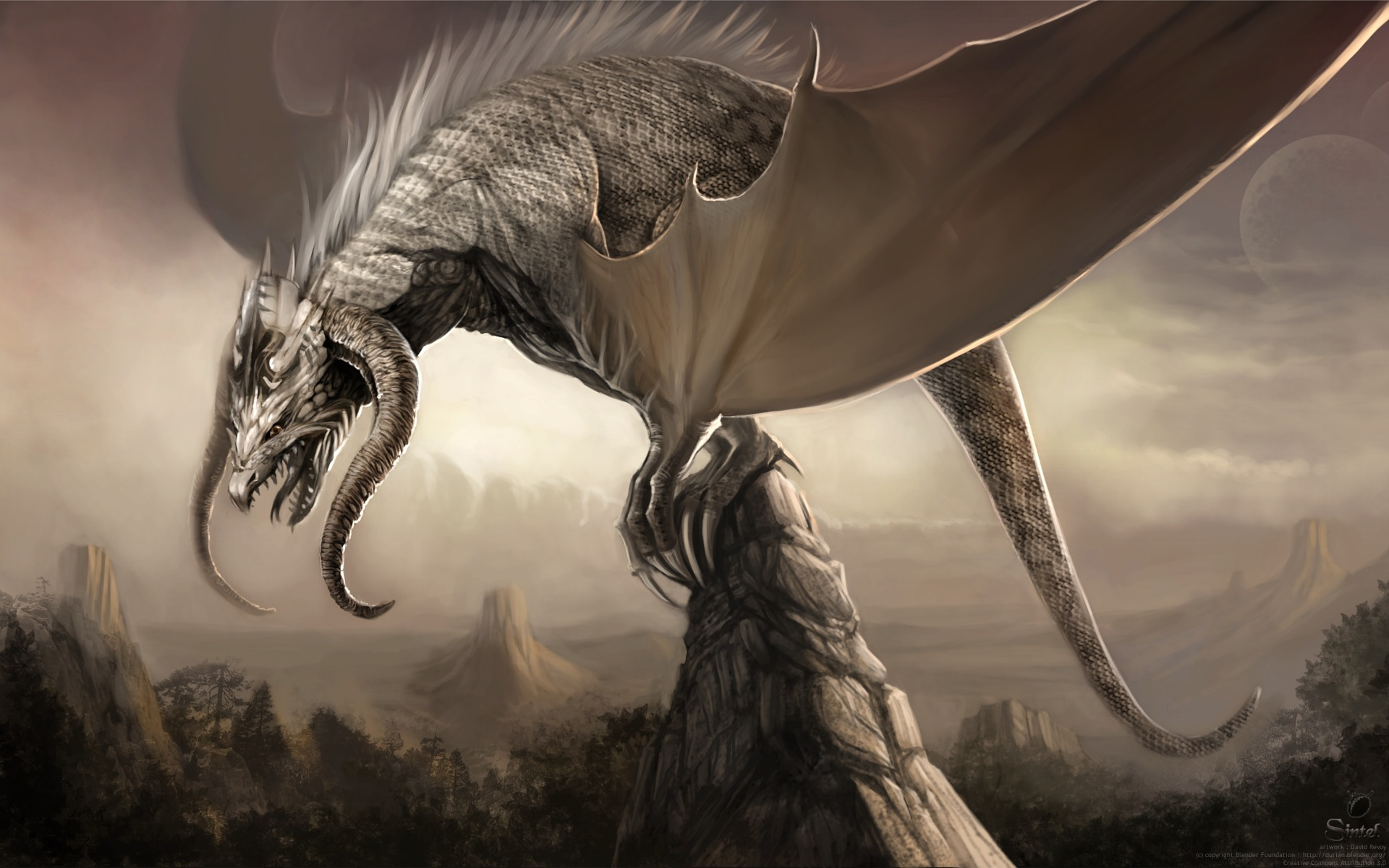 Dragon wallpaper   38810 1920x1200