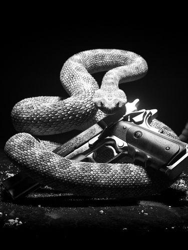 Snake and Gun screensaver for Amazon Kindle 3 375x500