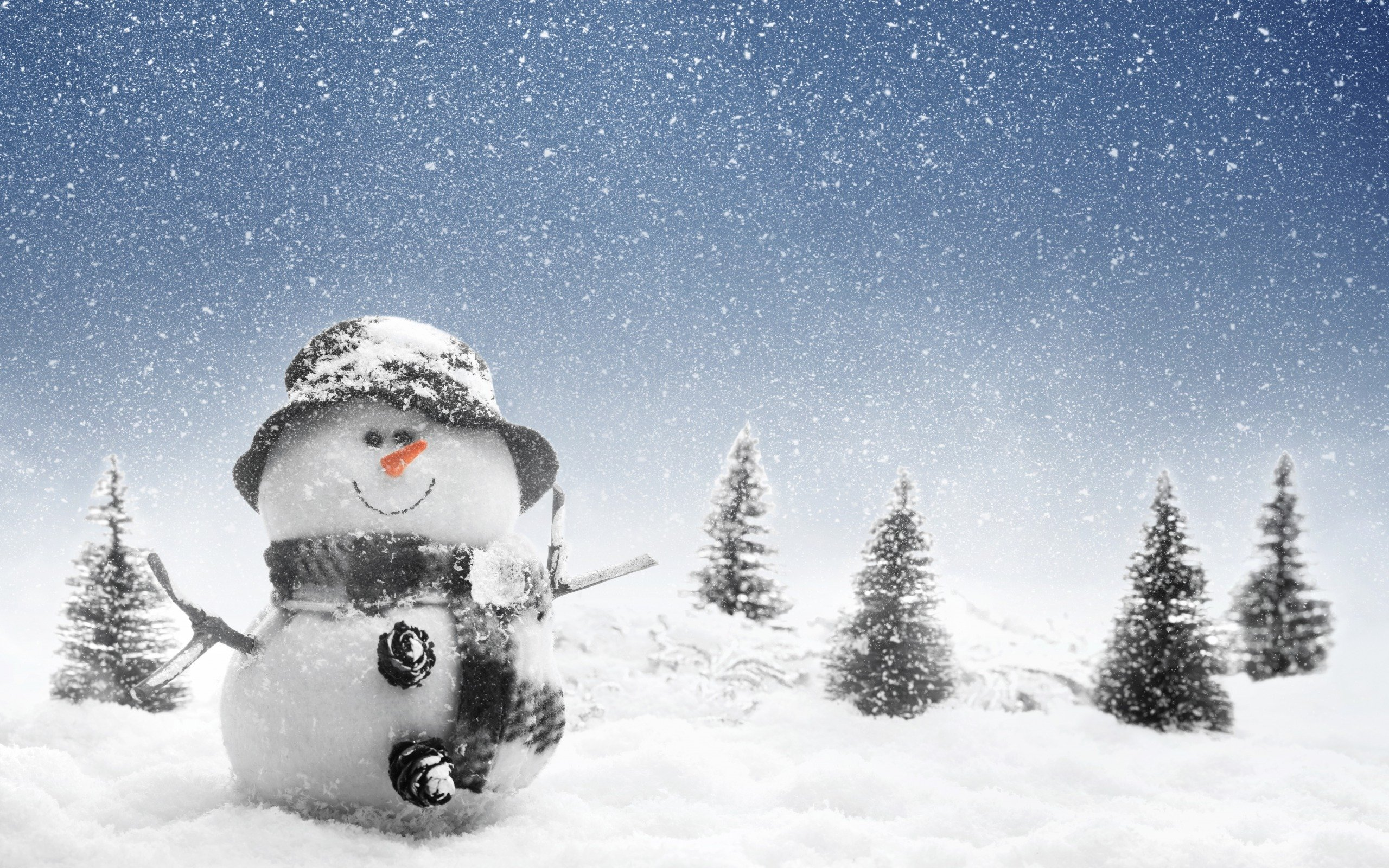 Snowman Wallpaper In Winter photos Christmas Snowman Wallpapers 2560x1600