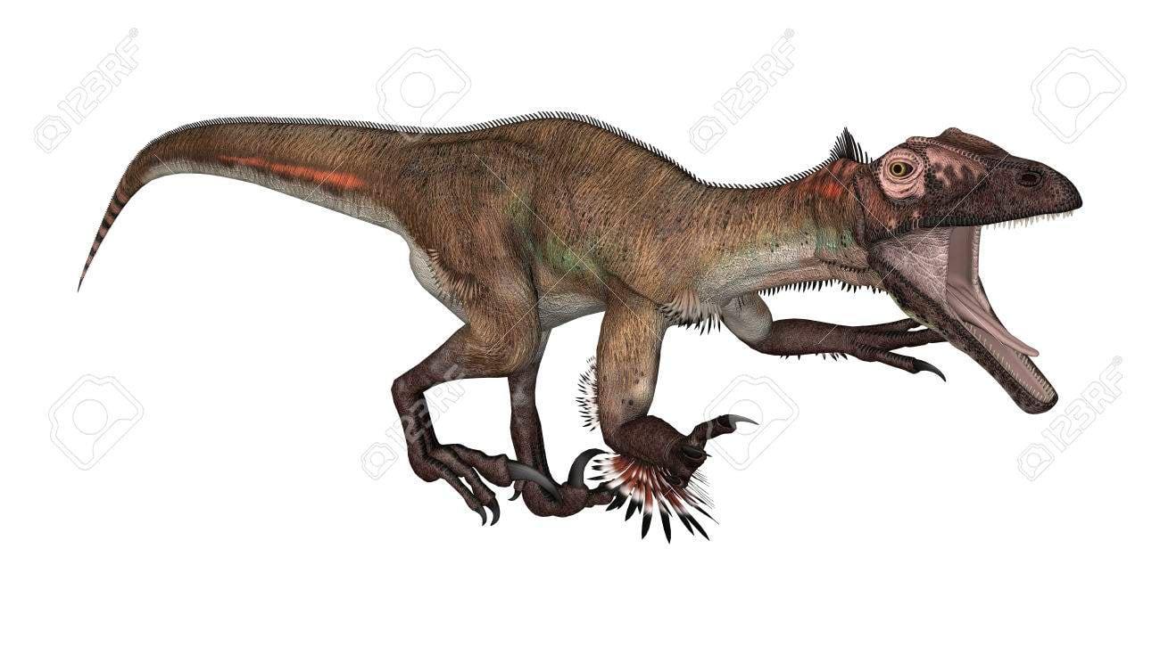 3D Digital Render Of A Dinosaur Utahraptor Isolated On White 1300x735
